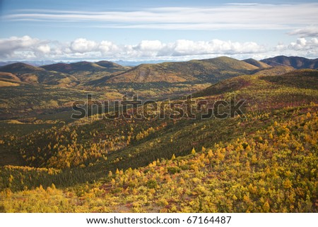Alaskan hillside with trees showing their Autumn colors. - stock photo