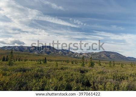 Alaskan landscape at Denali National Park and Preserve - stock photo