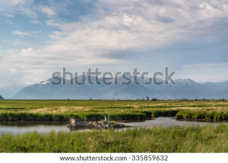 Alaskan stream and mountains - stock photo