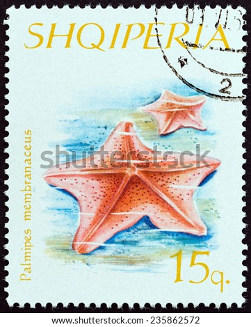 """ALBANIA - CIRCA 1966: A stamp printed in Albania from the """"Echinoderms """" issue shows Goosefoot Starfish (Palmipes membranaceus), circa 1966.  - stock photo"""