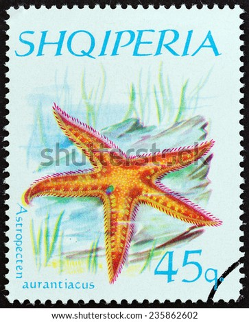"""ALBANIA - CIRCA 1966: A stamp printed in Albania from the """"Echinoderms """" issue shows Mediterranean Comb Starfish (Astropecten aurantiacus), circa 1966.  - stock photo"""