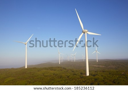 Albany Wind Farm, near the town of the same name in Western Australia, on a misty morning. - stock photo