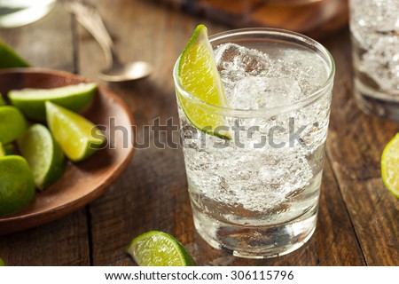 Alcoholic Gin and Tonic with a Lime Garnish - stock photo