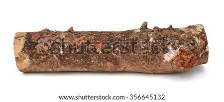 alder firewood - stock photo