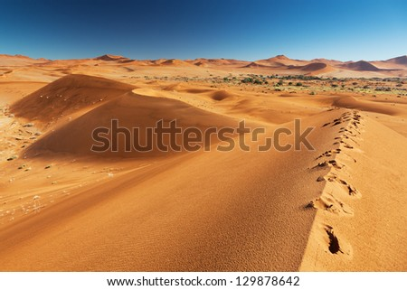 Alene footprints on huge sand dune. Africa. Namibia. - stock photo