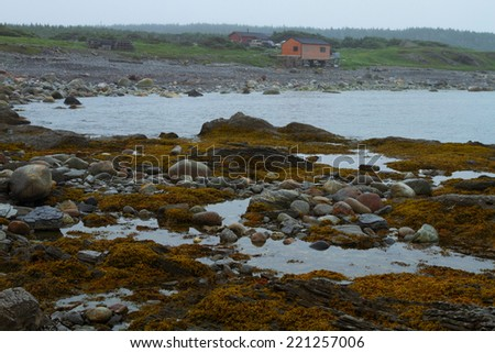Algae covered shore and fishing village after the rain - stock photo
