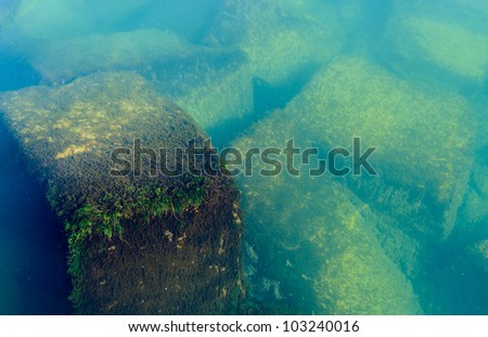 algae growth on underwater rocks on the side of a pier - stock photo