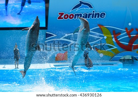 Algarve, Portugal - June 4, 2016: Dolphinarium - show with dolphins in Zoo