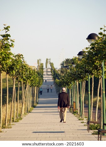 algorta's lined up tree walkway and alone walker(s) - stock photo