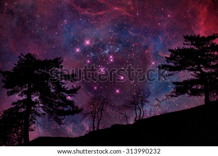 Alien planet with tree silhouette again sky with many stars - elements of this image are furnished by NASA - stock photo