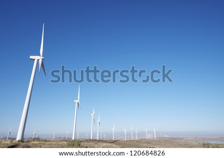 aligned windmills for renowable electric production with blue sky