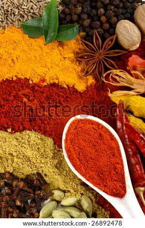 All kinds of spice and flavoring ingredients arranged beautifully - stock photo