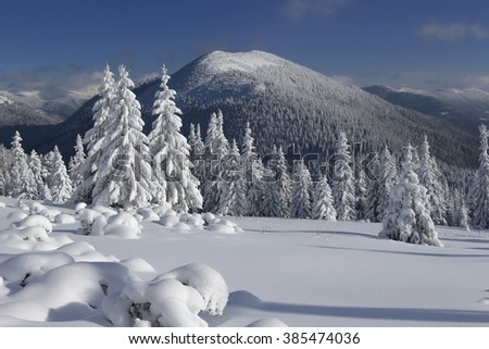 All mountains are covered with beautiful snow. Ukraine. Europe.