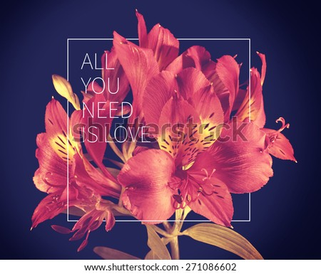 All you need is love inspiring motivation quote with vintage soft light natural flower bouquet background ideal for valentines day and wedding card.  - stock photo