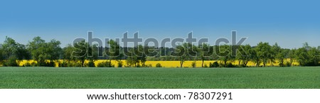 Alley between adjacent fields in Brandenburg, Germany - stock photo