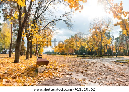 Alley in the autumn city park. Orange leaves ant trees - stock photo
