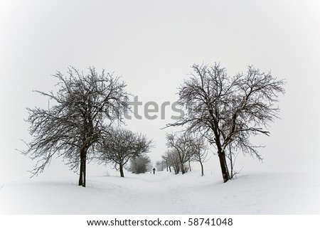 alley in winter - stock photo