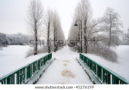 alley in winter park - stock photo