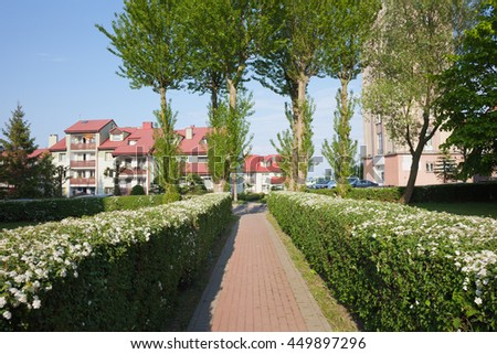 Alley with blooming hedge and apartment building in Wladyslawo town, Poland