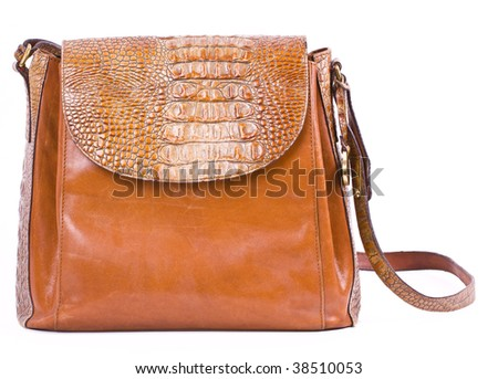 Alligator snake reptile leather brown purse isolated on white - stock photo
