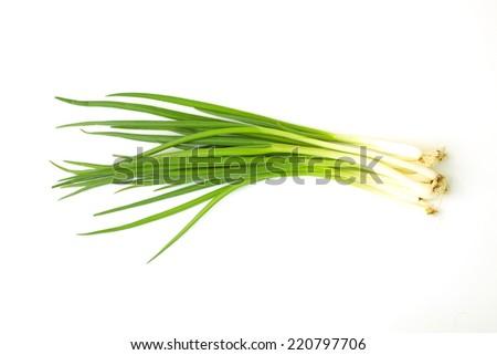 Allium fistulosum - stock photo