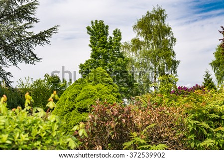 Allotment gardening community in urban landscape against cloudy sky Beautiful flowers, plants and trees in springtime in private garden park area, perfect for nature, gardening and hobby blog - stock photo