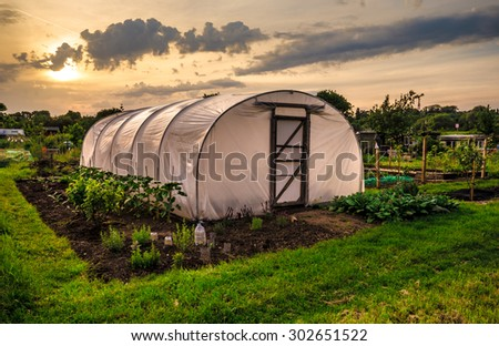 Allotments at sunset - Polythene tunnel as a plastic greenhouse in an allotment with growing vegetables at sunset. - stock photo