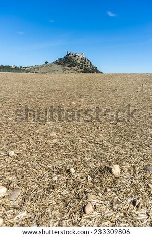Almodovar del Rio Castle in Andalusia, Spain - stock photo
