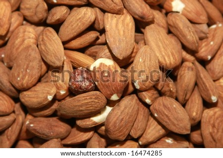 Almonds in a Pile at a Market