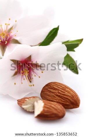 Almonds with flowers - stock photo