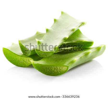 Aloe isolated on white background - stock photo