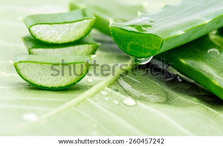 Aloe sliced on a green background - stock photo