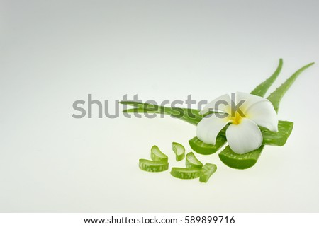 Aloe Vera and plumeria,flowers for Spa with copy space white background