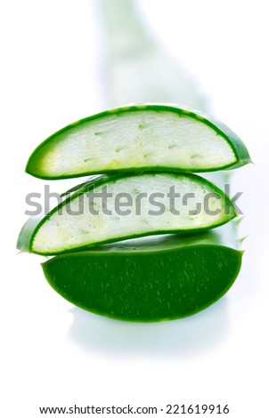 Aloe vera fresh leaf plant . - stock photo