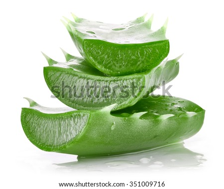 aloe vera leaves isolated on white Clipping Path - stock photo