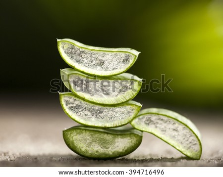 Aloe vera leaves on green tropical background - stock photo