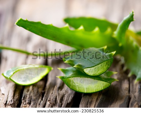 Aloe Vera leaves on wooden background - stock photo