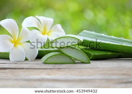 Aloe Vera leaves on wooden background - stock photo