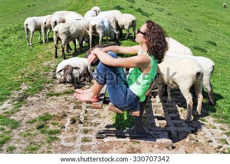 Alone among sheep - stock photo