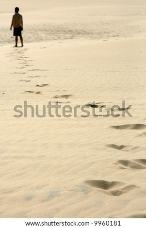 Alone in Desert -  - Fraser Island, UNESCO, Australia - stock photo