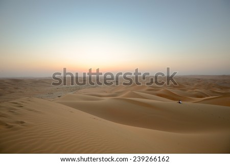 Alone in dune - stock photo