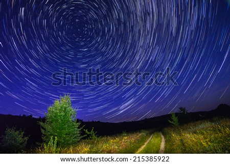 Alone tree on night sky with stars, star trails and country road grass - stock photo