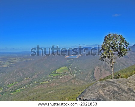 Alone tree on the cliff (Grampians National Park, Victoria, Australia)