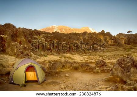 Alpenglow lights up the Kibo cone, Machame-Mweka Route, Kilimanjaro National Park, near Arusha, Tanzania, Africa - stock photo