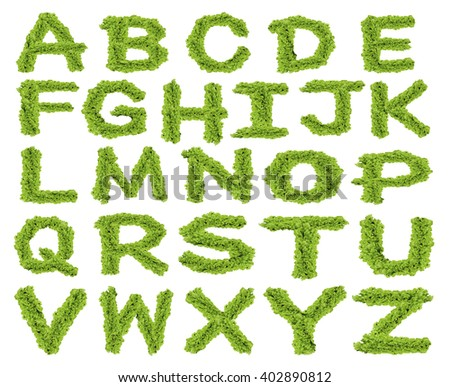 Alphabet ABC made from green leaves on isolated
