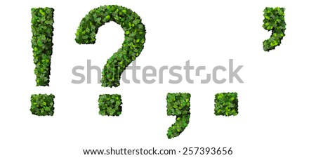 Alphabet marks letters ! ? , . ' exclamation mark, question mark, comma, period, quotation marks made from green leaves isolated on white background. - stock photo