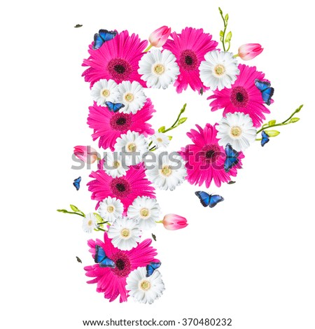 Alphabet P, flower isolated on white background. Gerber, tulips and butterfly  - stock photo
