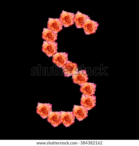 Alphabet S made with orange Roses