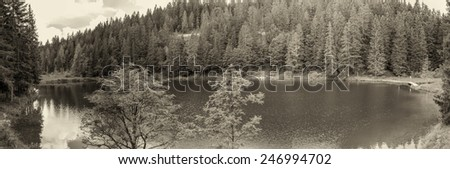 Alpin panoramic landscape. Lake with trees in summer season. - stock photo