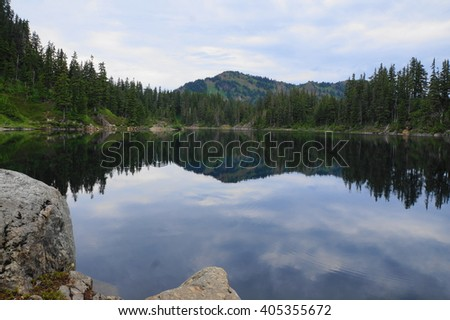 Alpine Forest, Washington State National Forest - stock photo